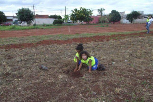 Galeria imagens – Ação: Plantio de Árvores